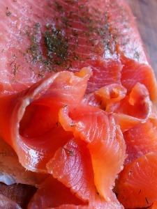 salmon-220093_640