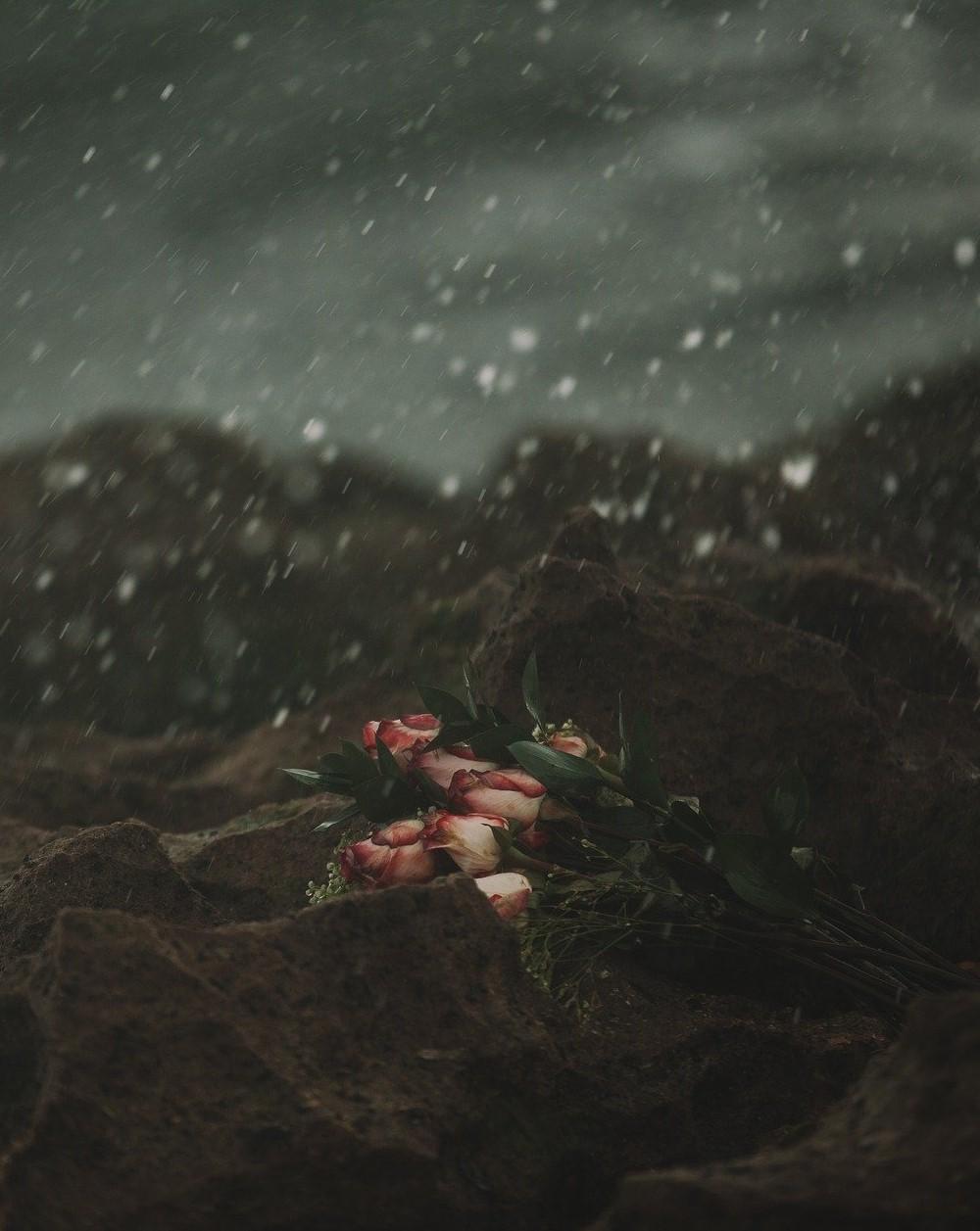 heartbreak-1209211_1920 cropped